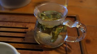 0 Day Old Home Grown Green Tea - InBetweenIsode 11 w/ Denny