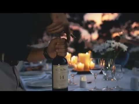 Experience Cono Sur Vineyards & Winery