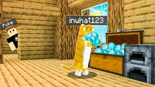 MINECRAFT CAT Stole My DIAMONDS.. Who It Was WILL SHOCK YOU!