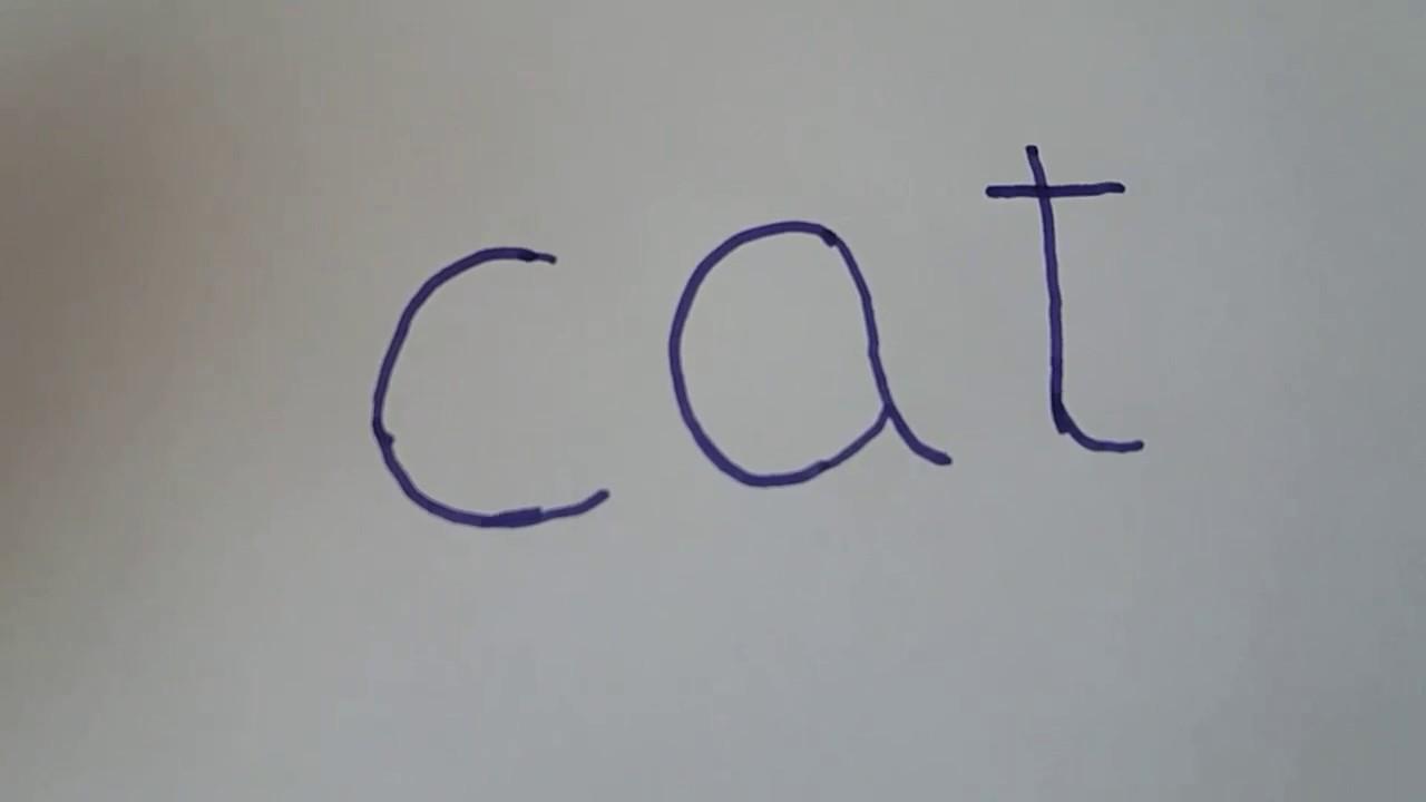 unde să marjează cripta comercială pisicile criptografice fac bani