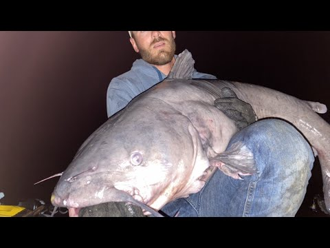 Everything Went Wrong While Battling This Big Blue Catfish