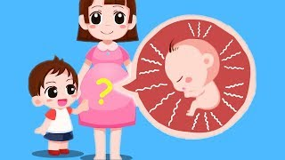 Children learn Where Do Babies Come From? Newborn Baby Care Game
