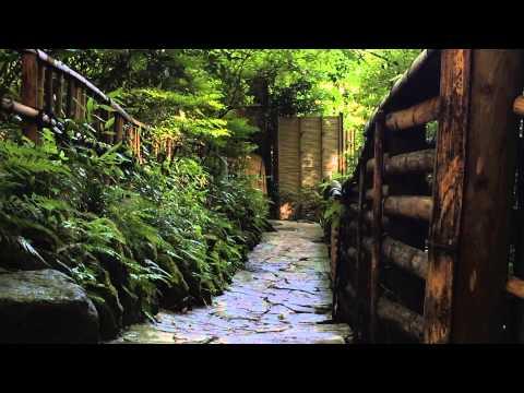【箱根小涌谷温泉 水の音】のおもてなし - 旅のたまご