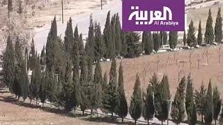 عراقيون في السليمانية يطلقون حملة لزراعة أشجار مع بداية الرب