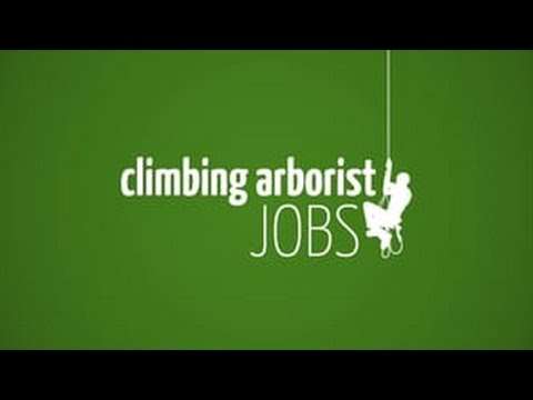 Looking for a job? Need more Arborist employees?