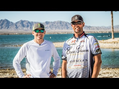 Shaun Bailey Previews Havasu