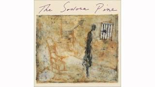 The Sonora Pine - Hoya Carnosa