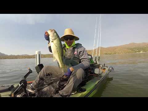 Fathers Day Fishing Bartlett Lake AZ