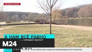 Почему москвичи не соблюдают режим самоизоляции - Москва 24