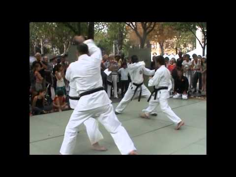 Nippon Budo Club Demo Publique