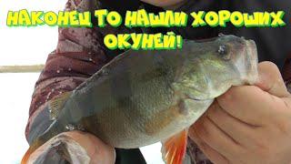 Рыбалка на ОКУНЬ СОШЕЛ С УМА КЛЮЕТ НА КАЖДОМ ЗАБРОСЕ КРУПНЯК