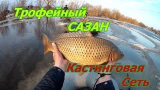 Трофейная рыбалка Кастинговой сетью САЗАН прёт