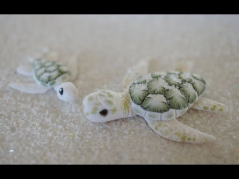 Albino Green Sea Turtle Tutorial, Collaboration with CoolRiceBunnies