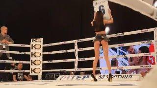 Ring Card Girls турнира 23 апреля 2016 в Киеве #2