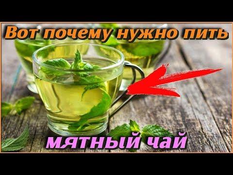 Вот ПОЧЕМУ нужно пить МЯТНЫЙ ЧАЙ Самые полезные советы для ЗДОРОВЬЯ и ДОЛГОЛЕТИЯ