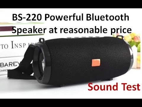 BS-220 Convenient outdoor sound system wireless Bluetooth Speaker - Sound  Test