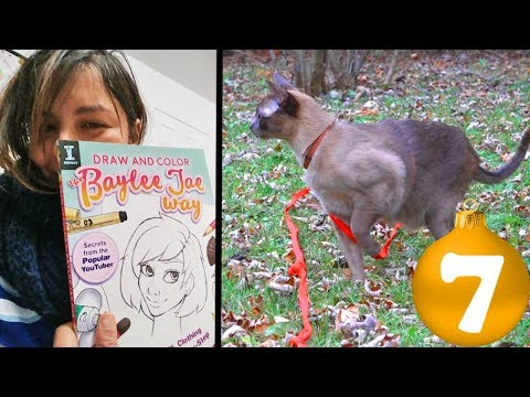 New Artbook & My Cat Goes for a Walk Vlogmas Day 7 2017