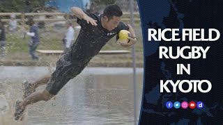 Rice field rugby in Japan!