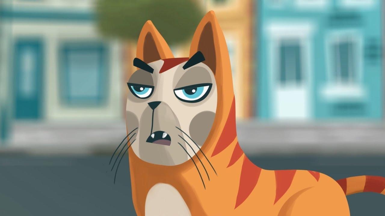 El Pot Petit - El gat enfadat