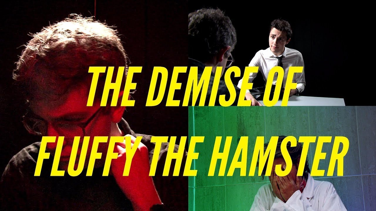 Hamster filmy
