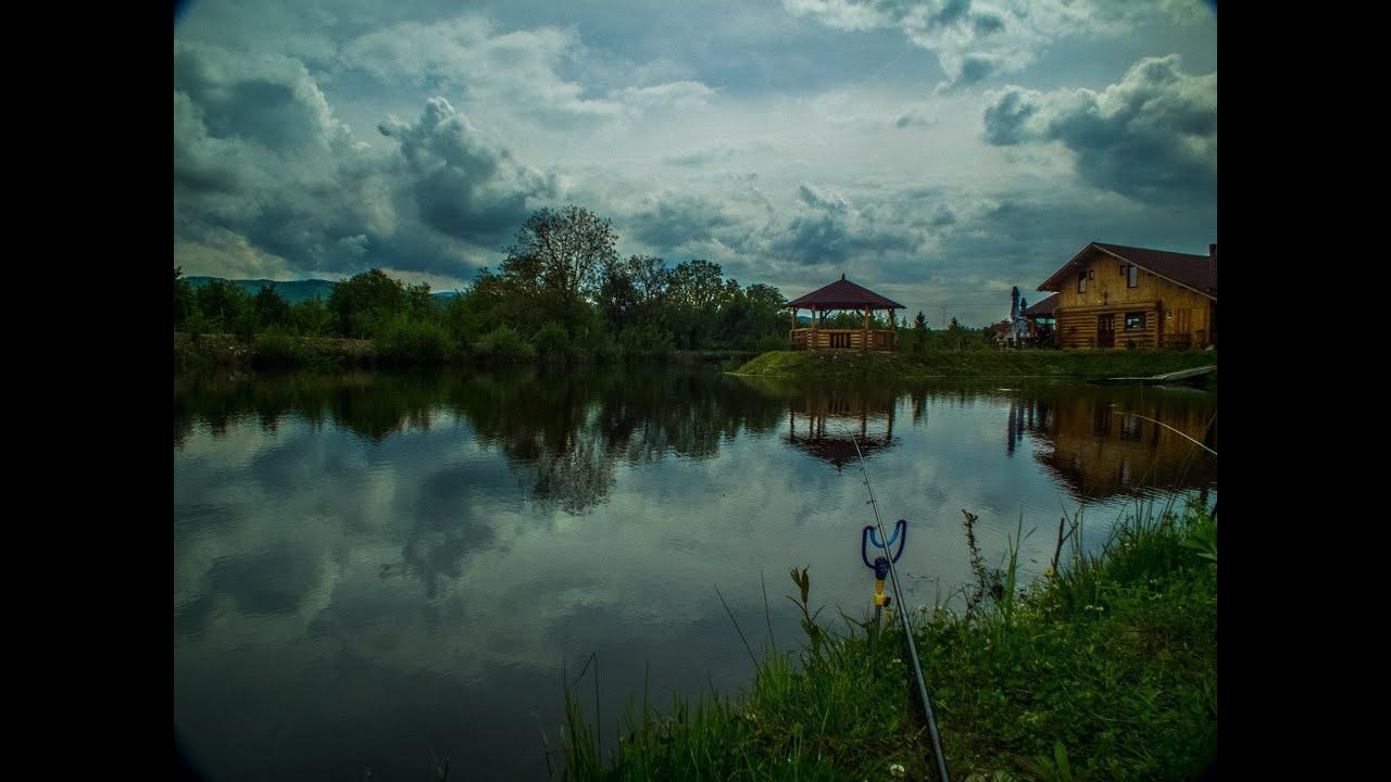 Preston fishing - Carp method feeder fishing - Pescuit la ...