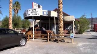 Fossil Trip Stromatolites Mojave Desert