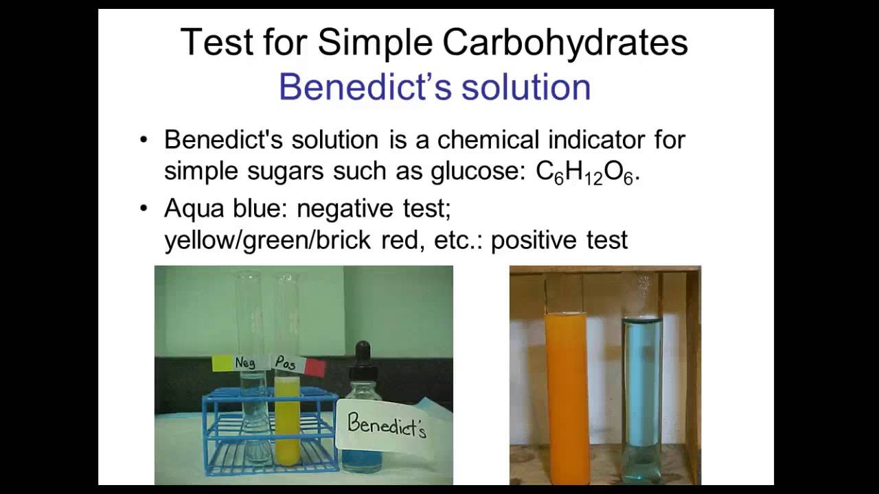 test for macromolecules lab report A great way to check whether students have mastered the tests is to give them one or more unknown samples of mixtures of lipids, carbohydrates and proteins and have students perform the tests above to figure out which of the macromolecules the sample contains.