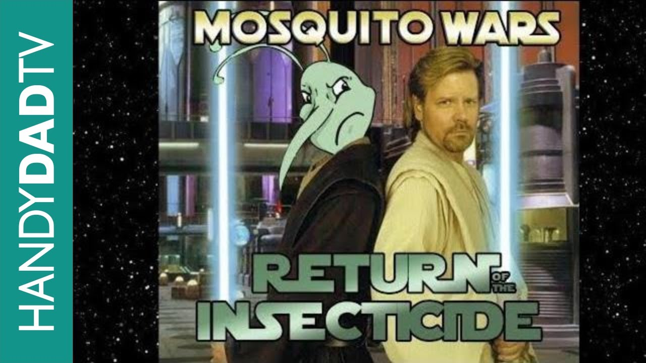 how to kill mosquitoes and eliminate them from your yard youtube