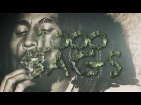 HBM Deezy & Young Jamo - 1000 Bags | Shot By ILMG