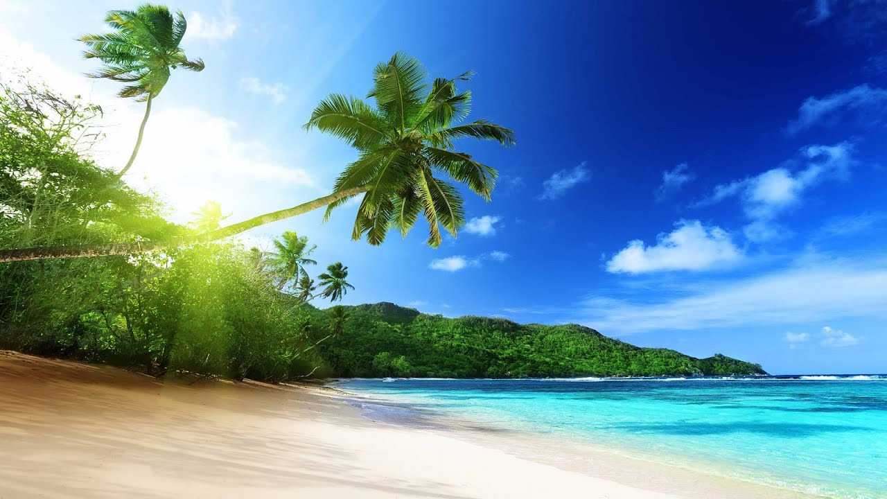 Tropical Island - wallpaper.