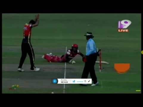 chittagong vaikings anamul hoek run out