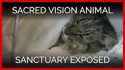 SACRED VISION ANIMAL SANCTUARY HOARDING INVESTIGATION