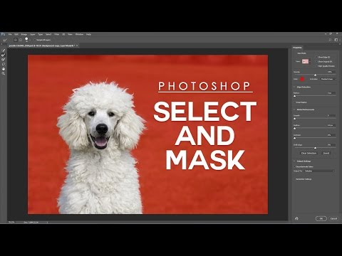 How To Select And Mask Easily In Photoshop [Photoshopdesire.com]