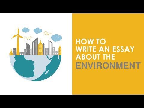 Buy expository essay writing