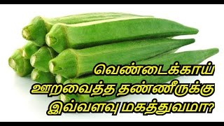 Benefits of Lady Finger in Tamil | Diabetes | Increase Memory Power | Healthy Life - Tamil.