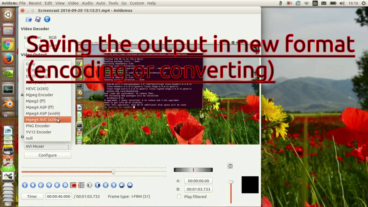 Avidemux - How to Edit Videos in Linux