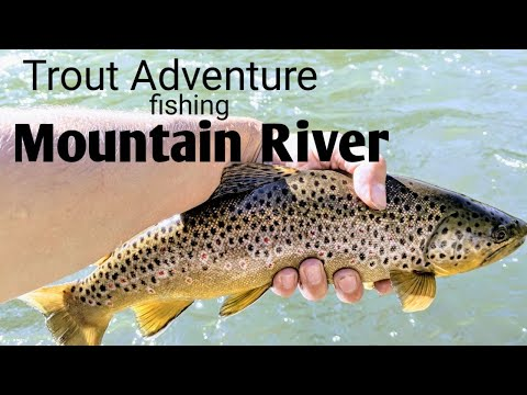 TROUT Fishing A Super AMAZING MOUNTAIN River (Part ONE)