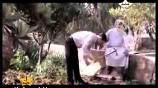 احمد تلاوي مجاريح   YouTube