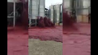 Video: se derramaron 50 mil litros de vino tras el colapso de un depósito