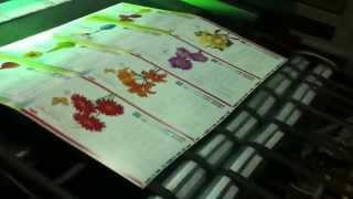 Типография ЧЕХ Пост Принт (выборочный уф лак)(, 2013-11-23T19:49:40.000Z)