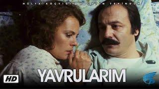 Yavrularım - Türk Filmi