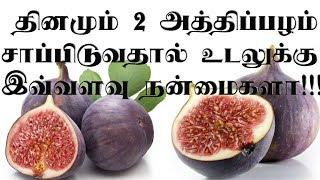 தினமும் 2 அத்திப்பழம் சாப்பிடுவதால் இவ்வளவு நன்மைகளா | Health benefits of Fig Fruit in Tamil