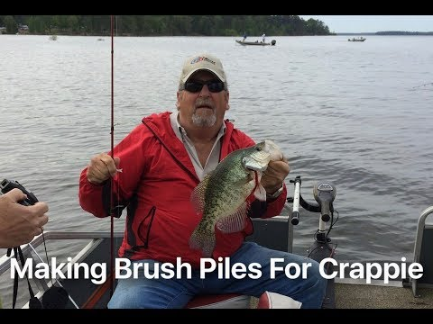 Making Brush Piles for Crappie 2008