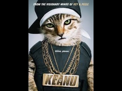 Gangster Cat