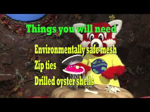 """""""Oyster Mat""""  Do And Show"""