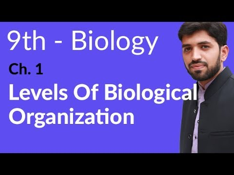 Levels of Biological Organization Biology - Biology Chapter 1 Introduction to Biology  - 9th Class