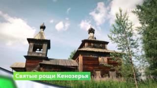 Природа. Кенозерье(Кенозерский национальный парк находится в юго-западной части Архангельской области. В 2004 году включён..., 2016-03-07T05:59:12.000Z)