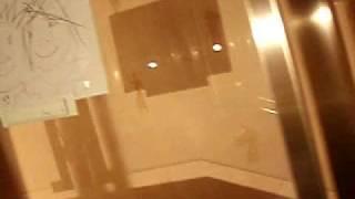 久々に行ったら父の日の似顔絵が、螺旋階段に張ってあった・・・。