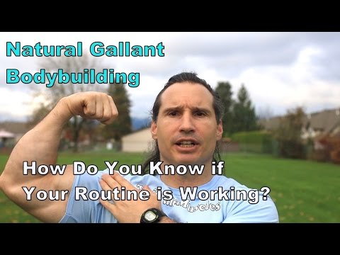 How DO You Know if Your Natural Bodybuilding Program is Working?