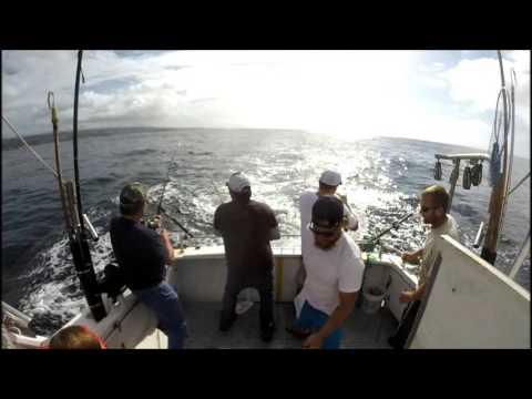 Santa cruz fishing charters team zardo on mega bite for Santa cruz fishing report